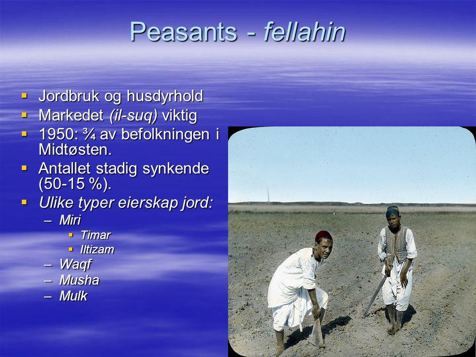 Peasants - fellahin Jordbruk og husdyrhold Markedet (il-suq) viktig