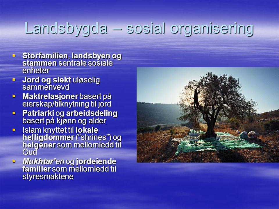 Landsbygda – sosial organisering