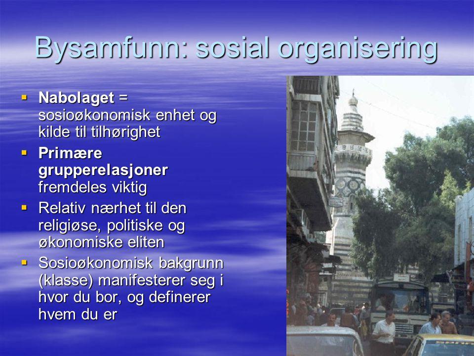 Bysamfunn: sosial organisering