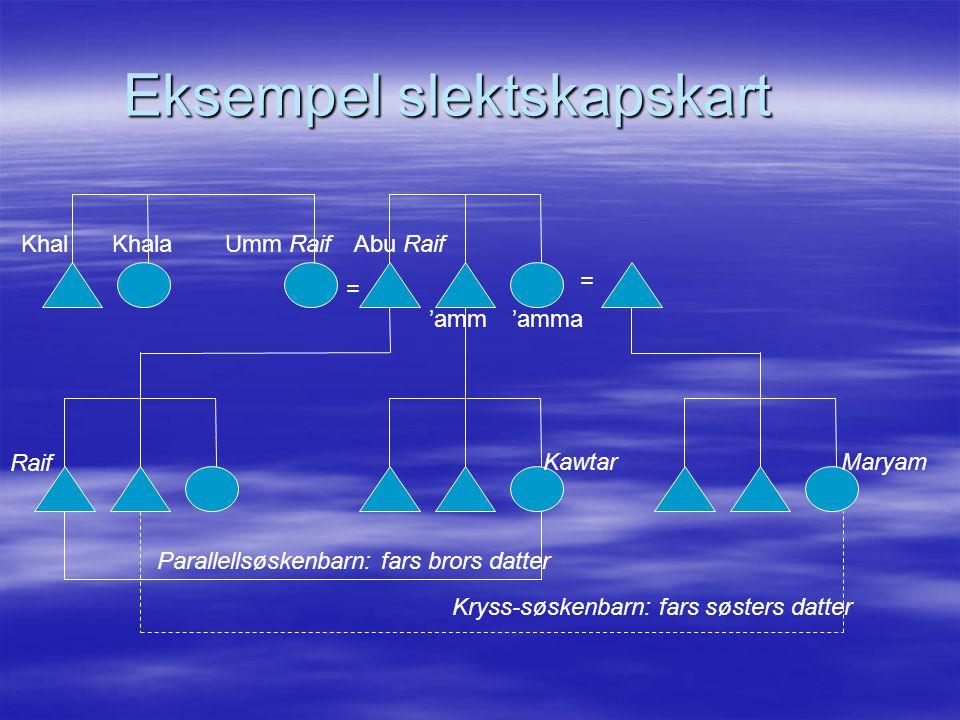 Eksempel slektskapskart