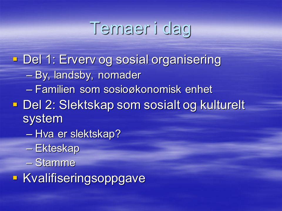 Temaer i dag Del 1: Erverv og sosial organisering