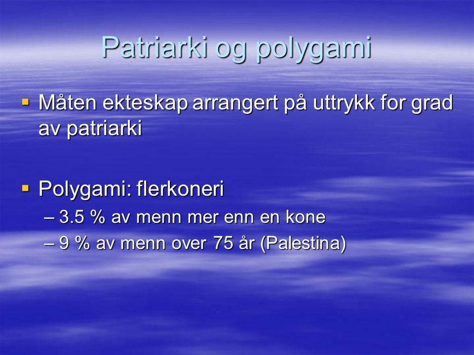 Patriarki og polygami Måten ekteskap arrangert på uttrykk for grad av patriarki. Polygami: flerkoneri.