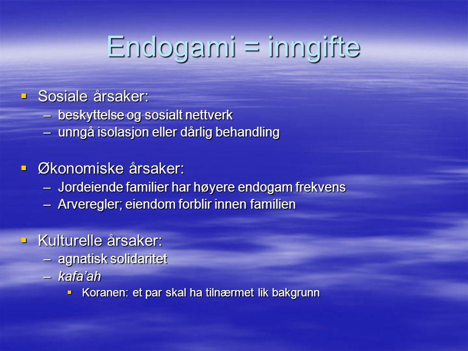 Endogami = inngifte Sosiale årsaker: Økonomiske årsaker: