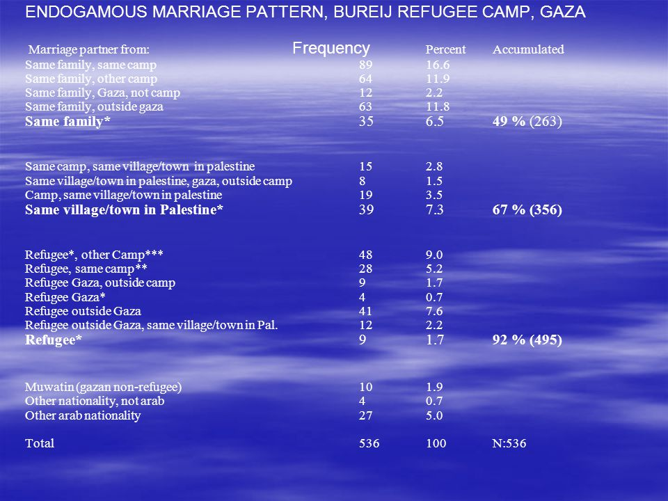 ENDOGAMOUS MARRIAGE PATTERN, BUREIJ REFUGEE CAMP, GAZA