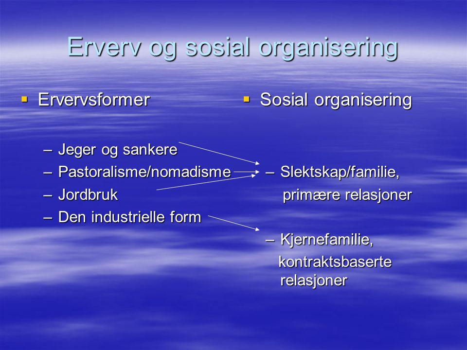 Erverv og sosial organisering