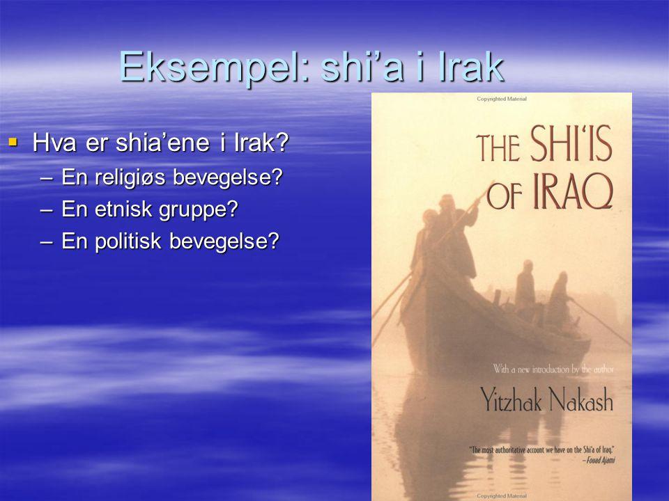 Eksempel: shi'a i Irak Hva er shia'ene i Irak En religiøs bevegelse