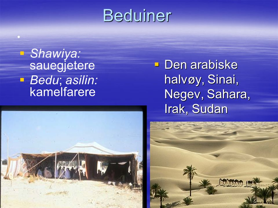 Beduiner Den arabiske halvøy, Sinai, Negev, Sahara, Irak, Sudan