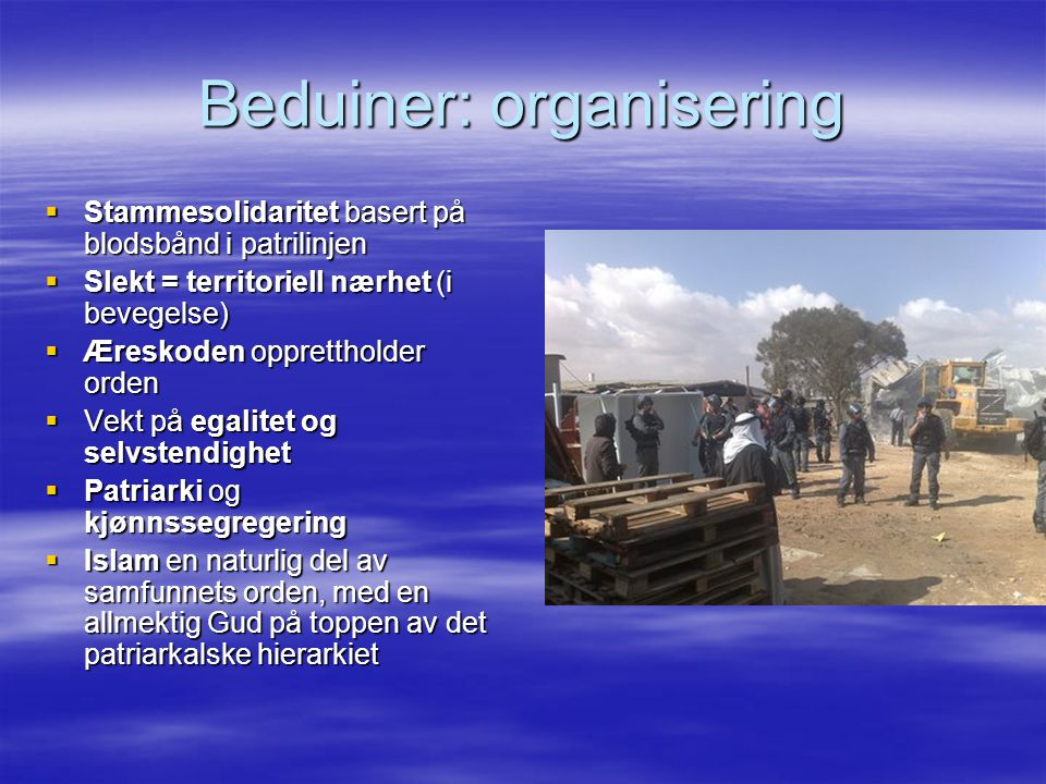 Beduiner: organisering