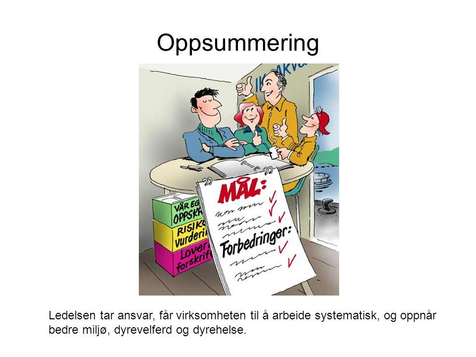 Oppsummering A.