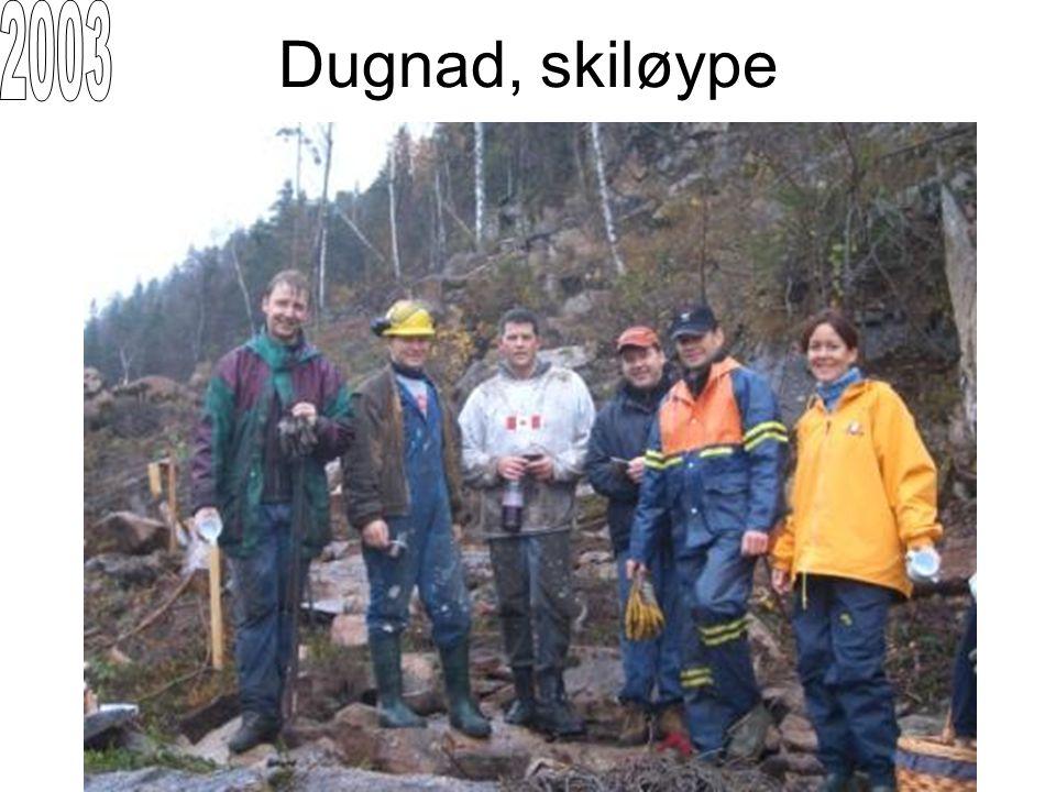 2003 Dugnad, skiløype