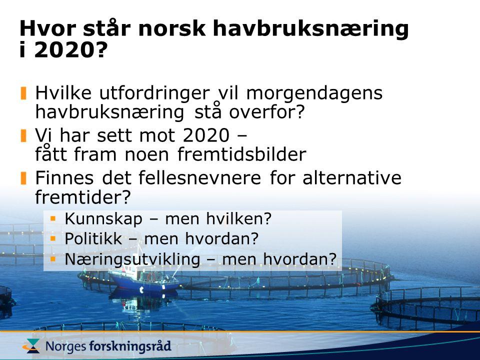 Hvor står norsk havbruksnæring i 2020