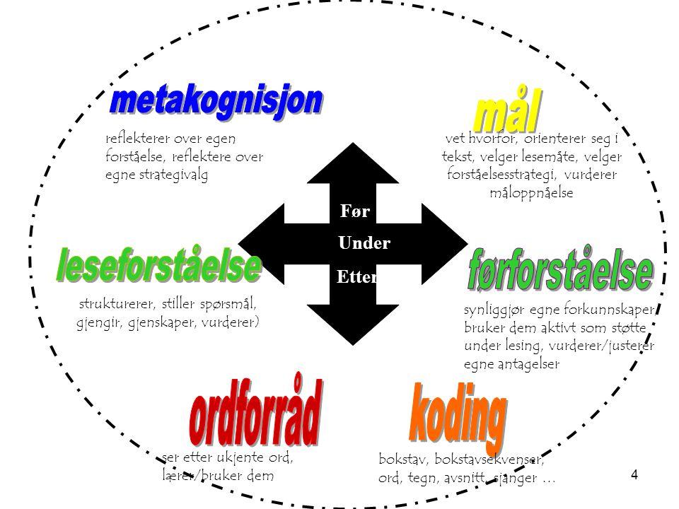 strukturerer, stiller spørsmål, gjengir, gjenskaper, vurderer)