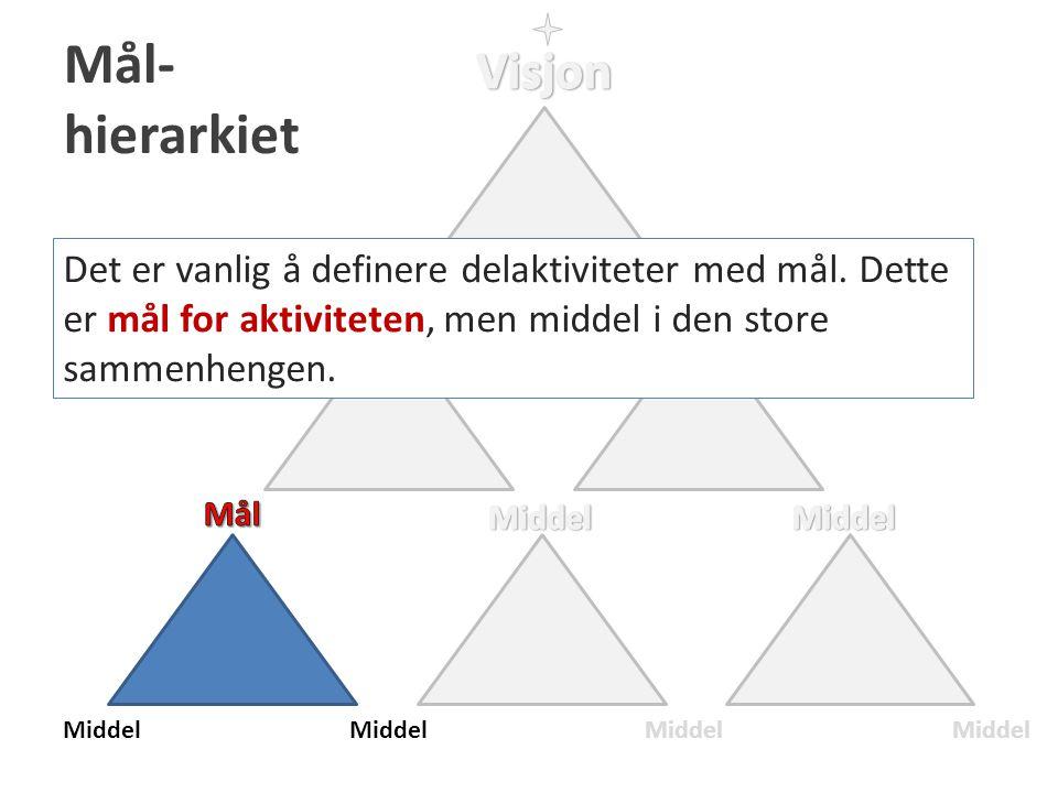 Mål- hierarkiet Visjon