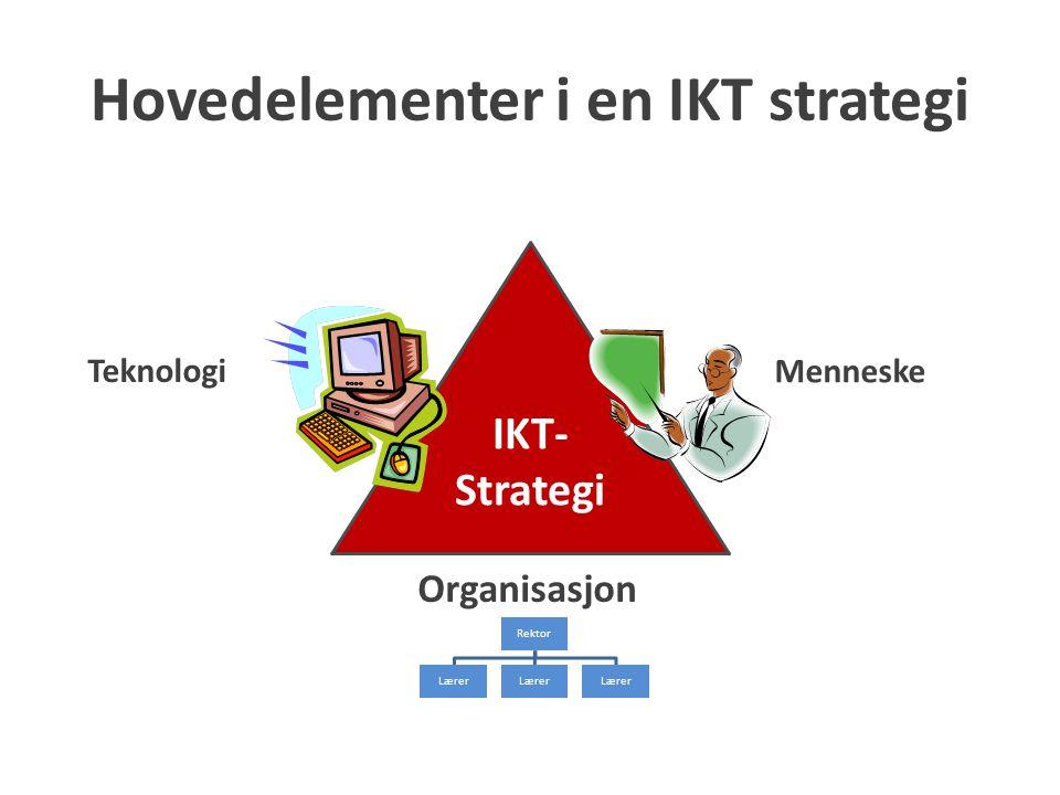 Hovedelementer i en IKT strategi