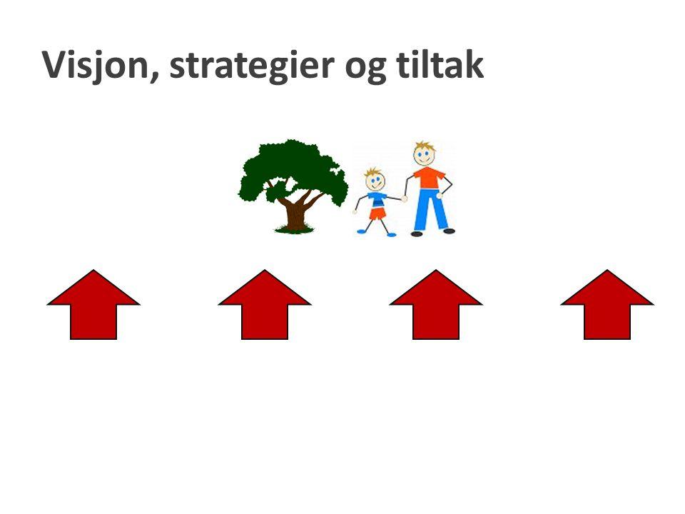 Visjon, strategier og tiltak