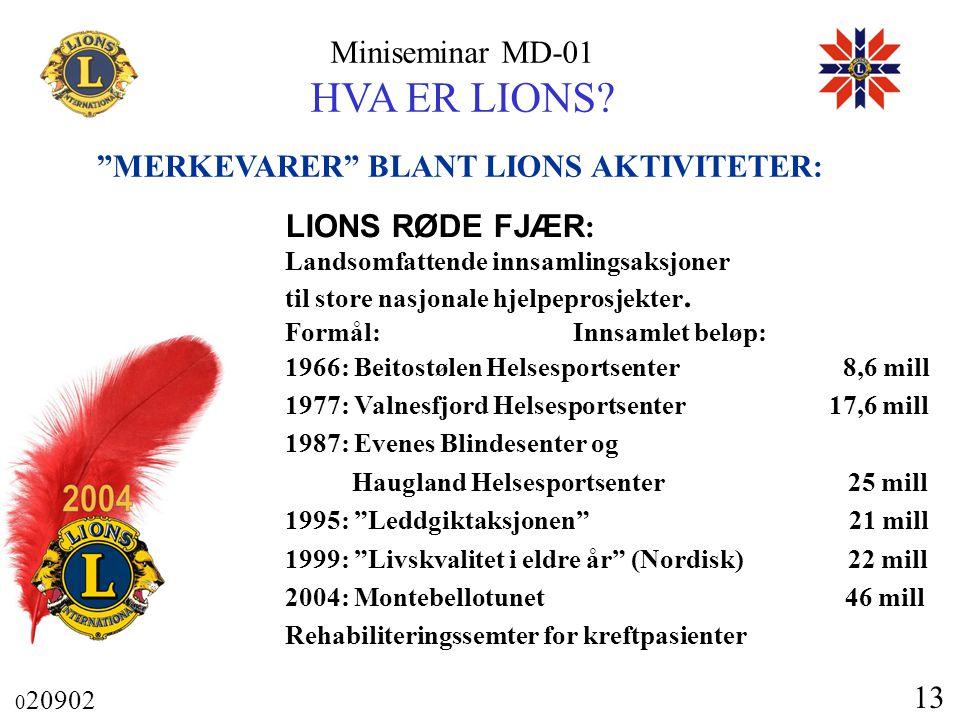 MERKEVARER BLANT LIONS AKTIVITETER: