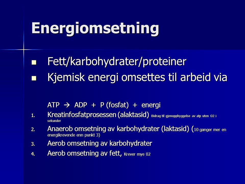 Energiomsetning Fett/karbohydrater/proteiner