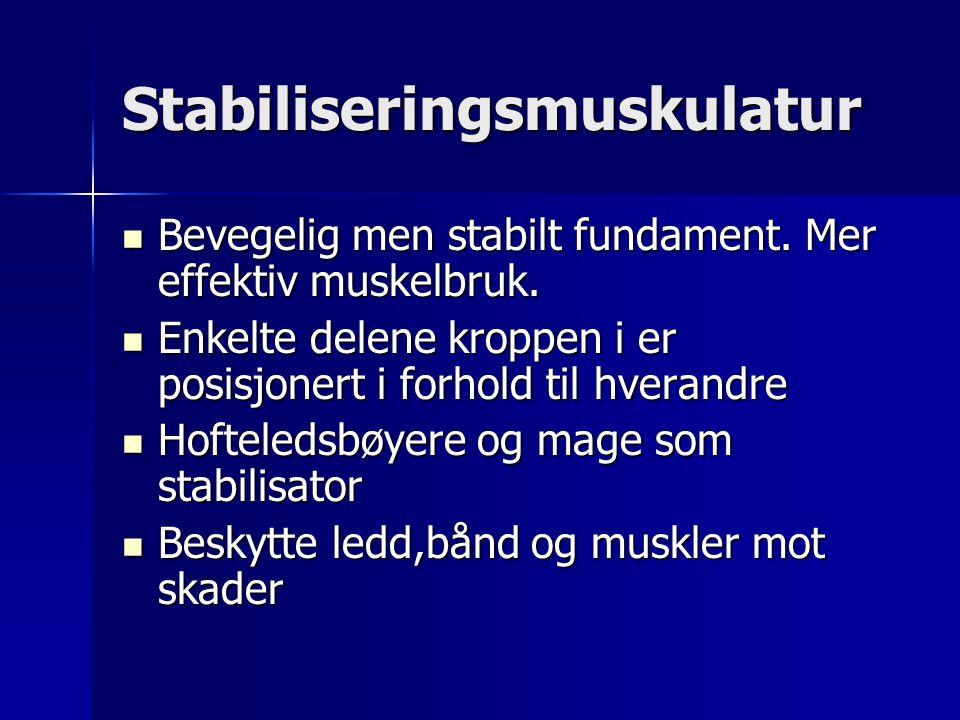 Stabiliseringsmuskulatur