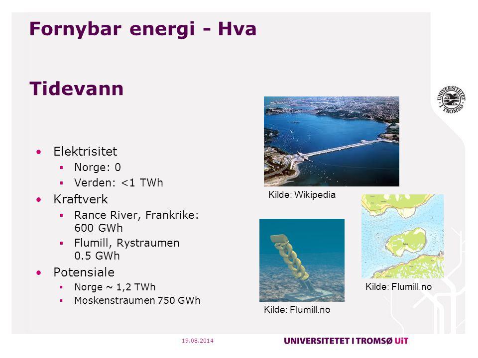 Fornybar energi - Hva Tidevann Elektrisitet Kraftverk Potensiale