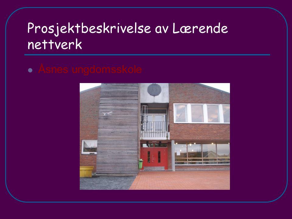 Prosjektbeskrivelse av Lærende nettverk