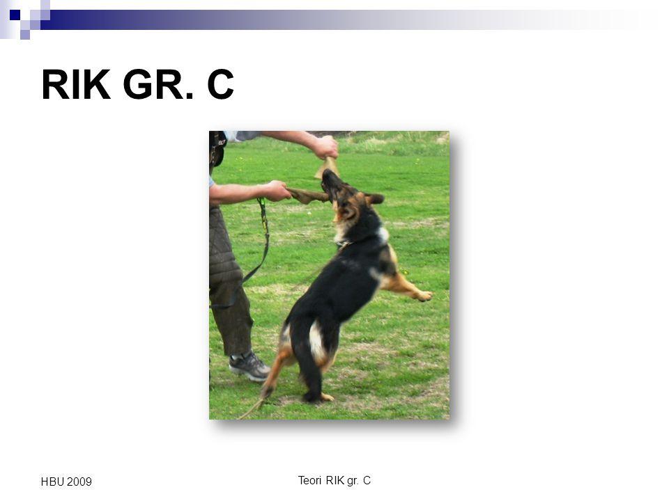 RIK GR. C HBU 2009 Teori RIK gr. C