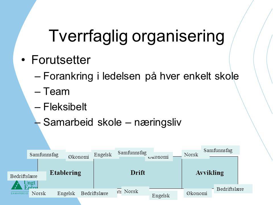 Tverrfaglig organisering