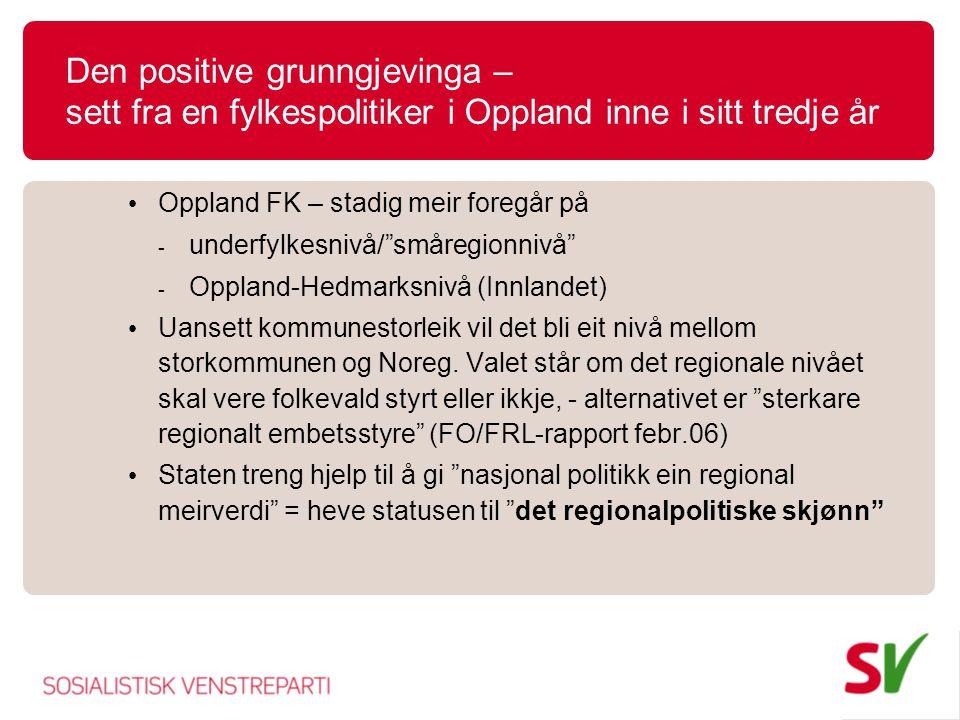 Den positive grunngjevinga – sett fra en fylkespolitiker i Oppland inne i sitt tredje år