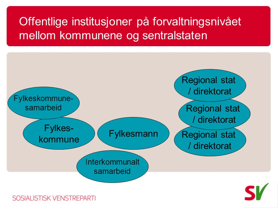 Offentlige institusjoner på forvaltningsnivået mellom kommunene og sentralstaten