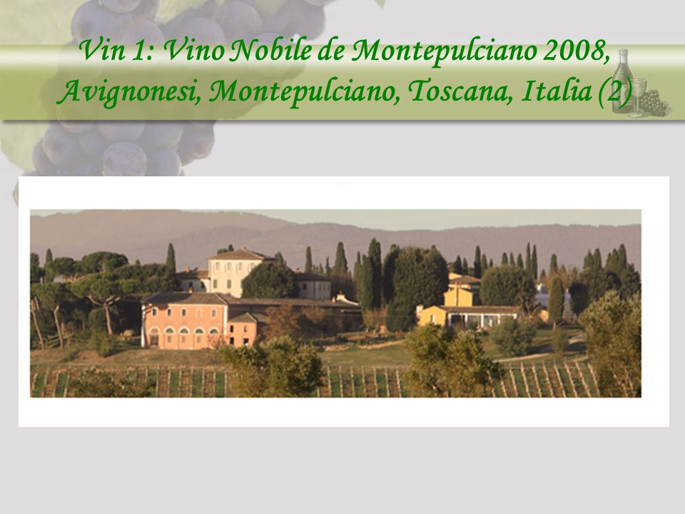 Vin 1: Vino Nobile de Montepulciano 2008, Avignonesi, Montepulciano, Toscana, Italia (2)