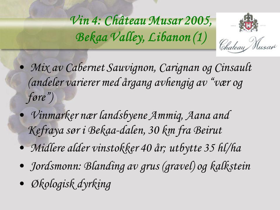 Vin 4: Château Musar 2005, Bekaa Valley, Libanon (1)