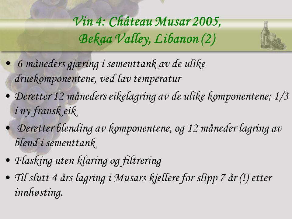 Vin 4: Château Musar 2005, Bekaa Valley, Libanon (2)
