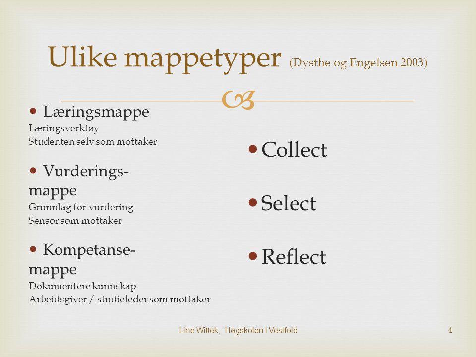 Ulike mappetyper (Dysthe og Engelsen 2003)