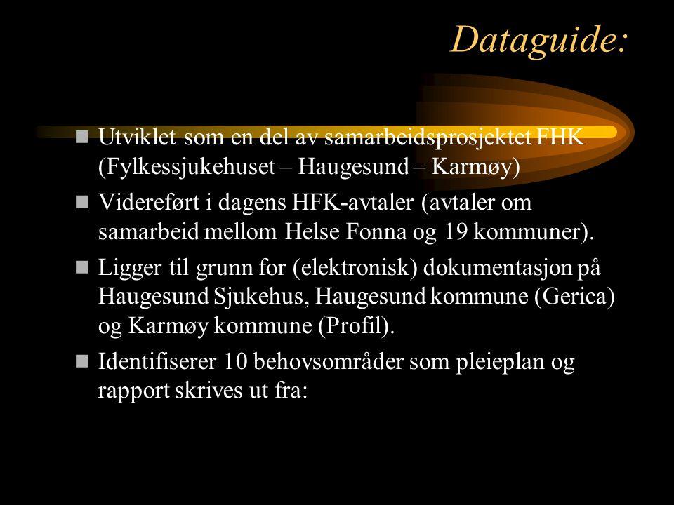 Dataguide: Utviklet som en del av samarbeidsprosjektet FHK (Fylkessjukehuset – Haugesund – Karmøy)