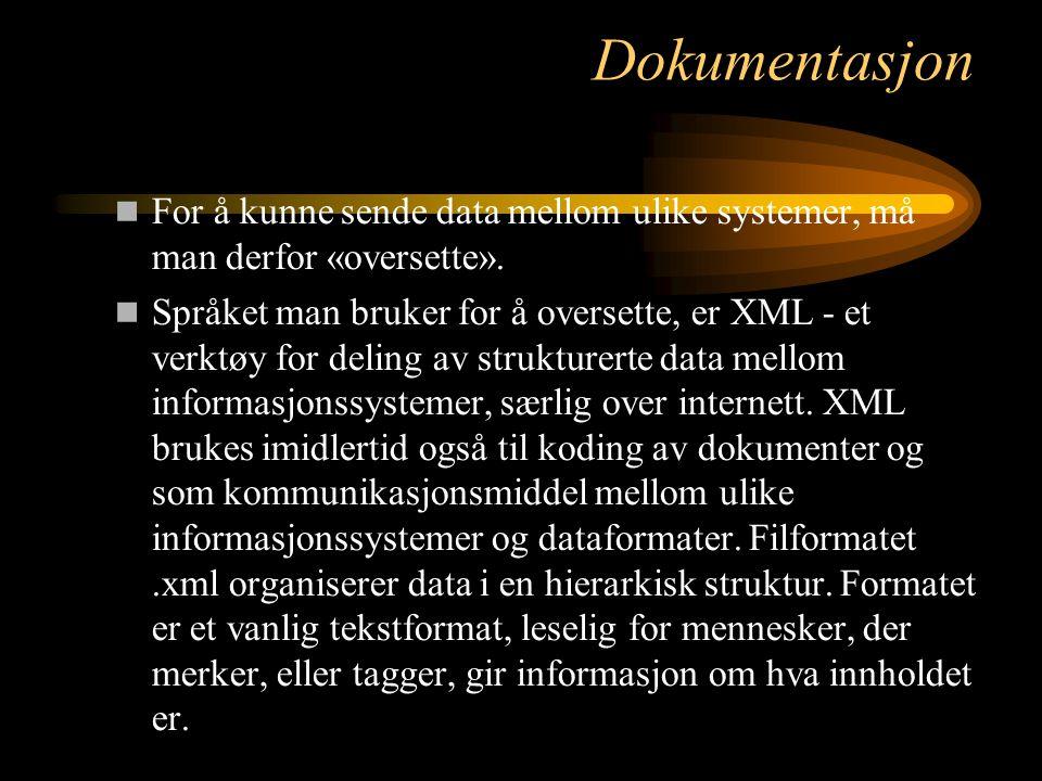 Dokumentasjon For å kunne sende data mellom ulike systemer, må man derfor «oversette».