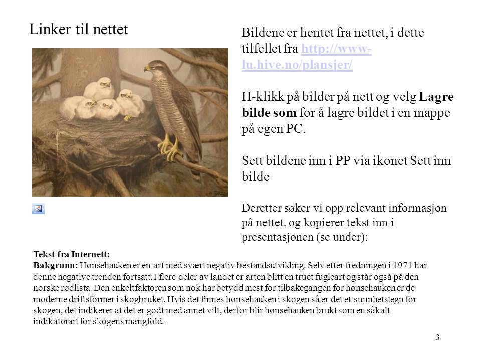 Linker til nettet Bildene er hentet fra nettet, i dette tilfellet fra http://www-lu.hive.no/plansjer/