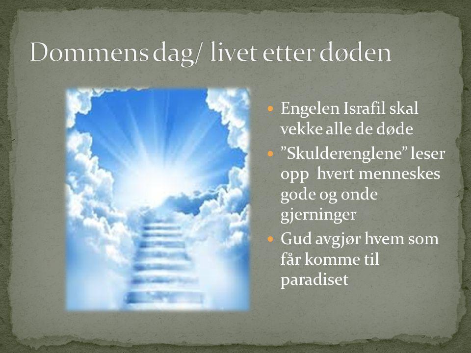 Dommens dag/ livet etter døden
