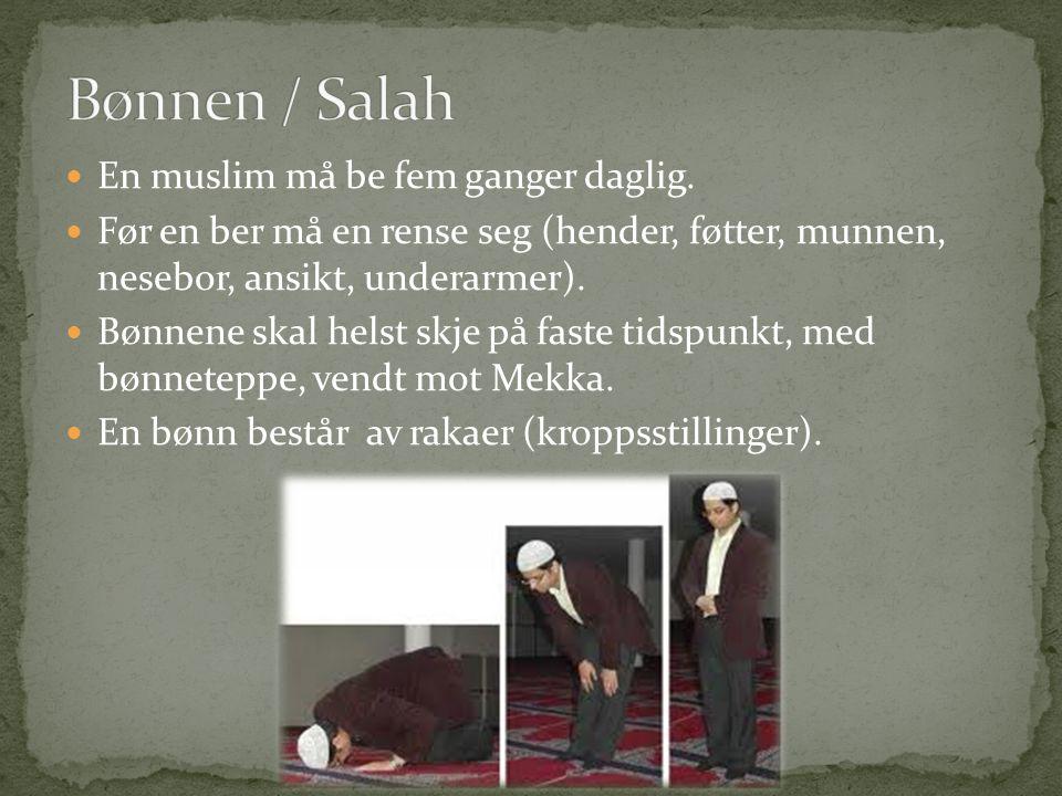 Bønnen / Salah En muslim må be fem ganger daglig.