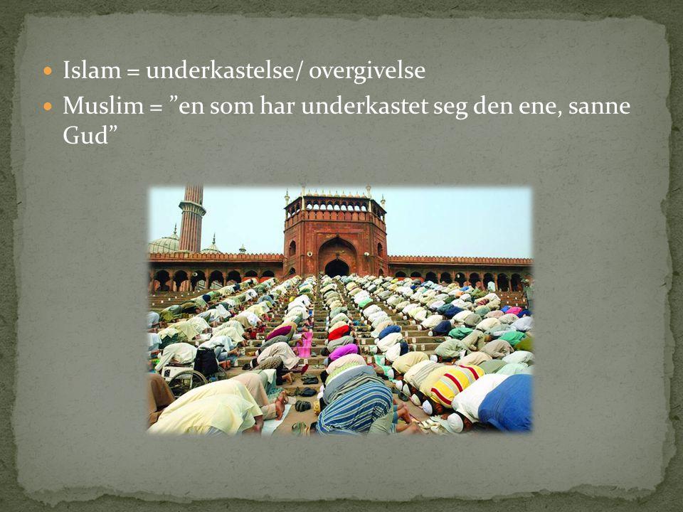 Islam = underkastelse/ overgivelse