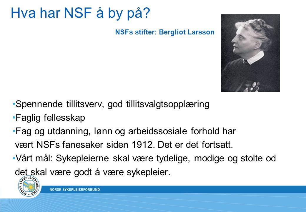 Hva har NSF å by på NSFs stifter: Bergliot Larsson