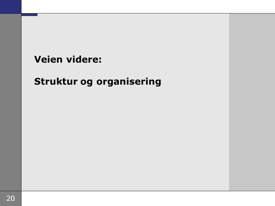 Veien videre: Struktur og organisering