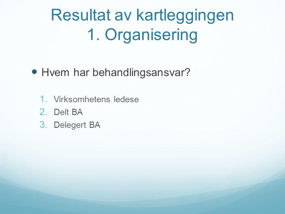 Resultat av kartleggingen 1. Organisering