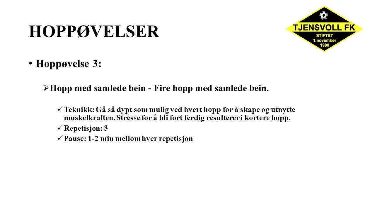 HOPPØVELSER Hoppøvelse 3: