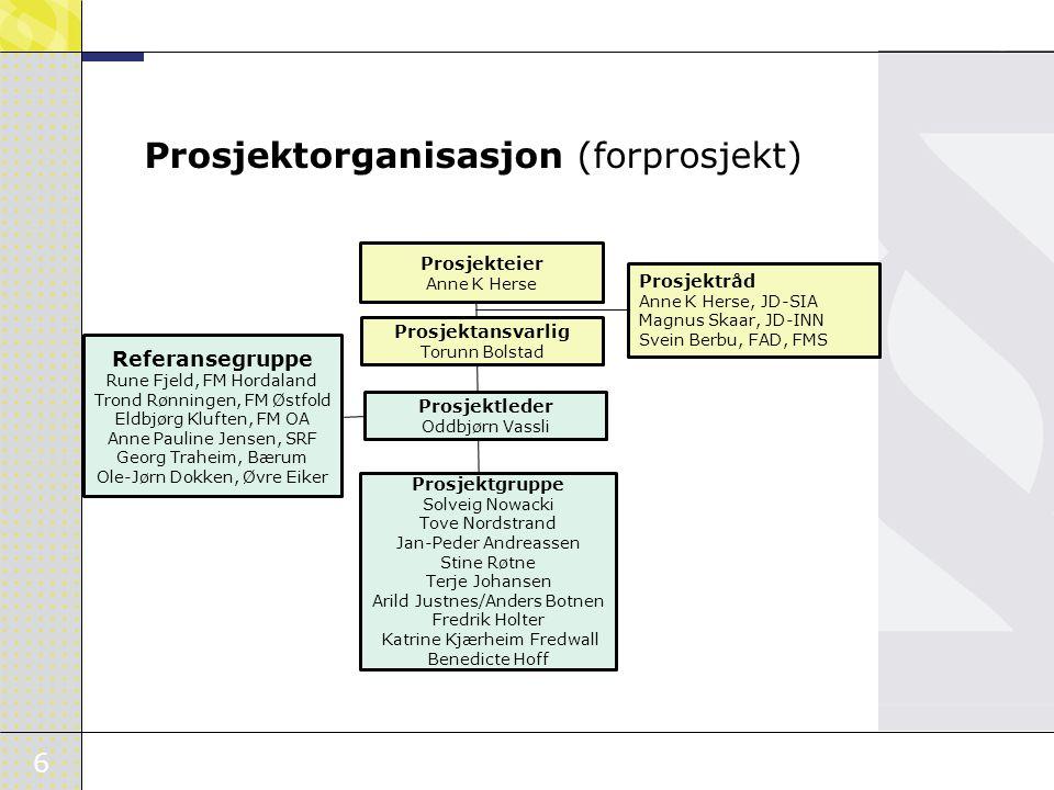 Prosjektorganisasjon (forprosjekt)
