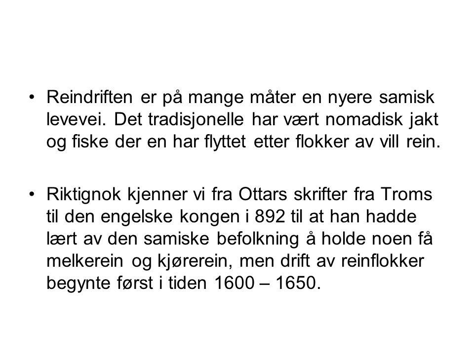 Reindriften er på mange måter en nyere samisk levevei