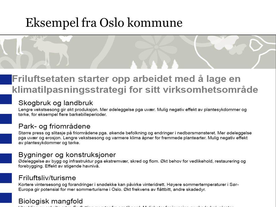 Eksempel fra Oslo kommune