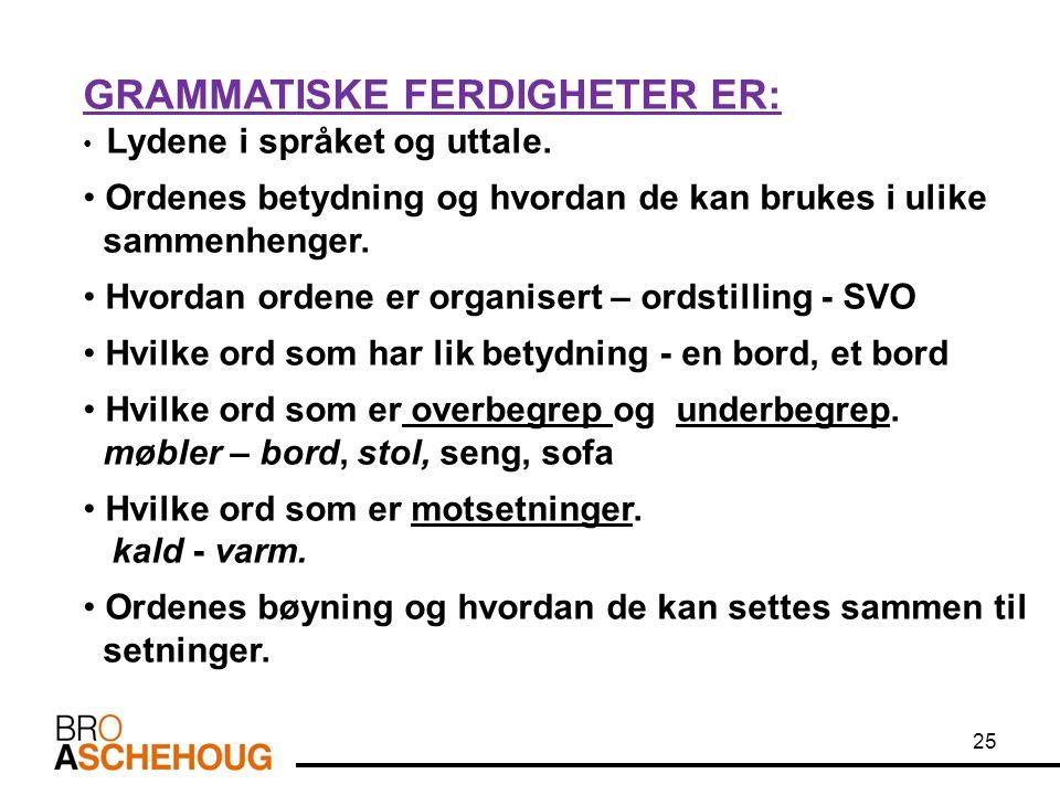 GRAMMATISKE FERDIGHETER ER: