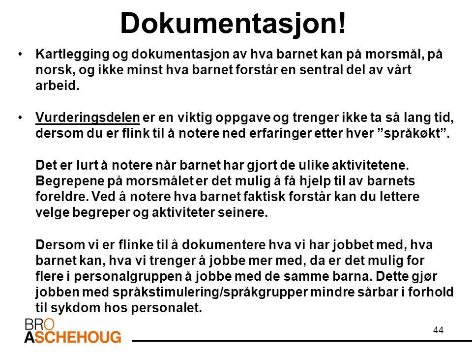 Dokumentasjon! Kartlegging og dokumentasjon av hva barnet kan på morsmål, på norsk, og ikke minst hva barnet forstår en sentral del av vårt arbeid.