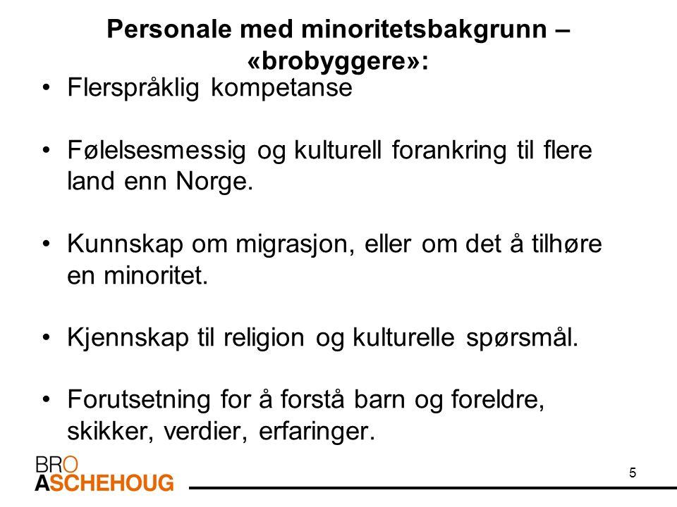 Personale med minoritetsbakgrunn – «brobyggere»: