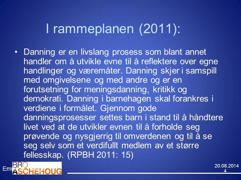 I rammeplanen (2011):