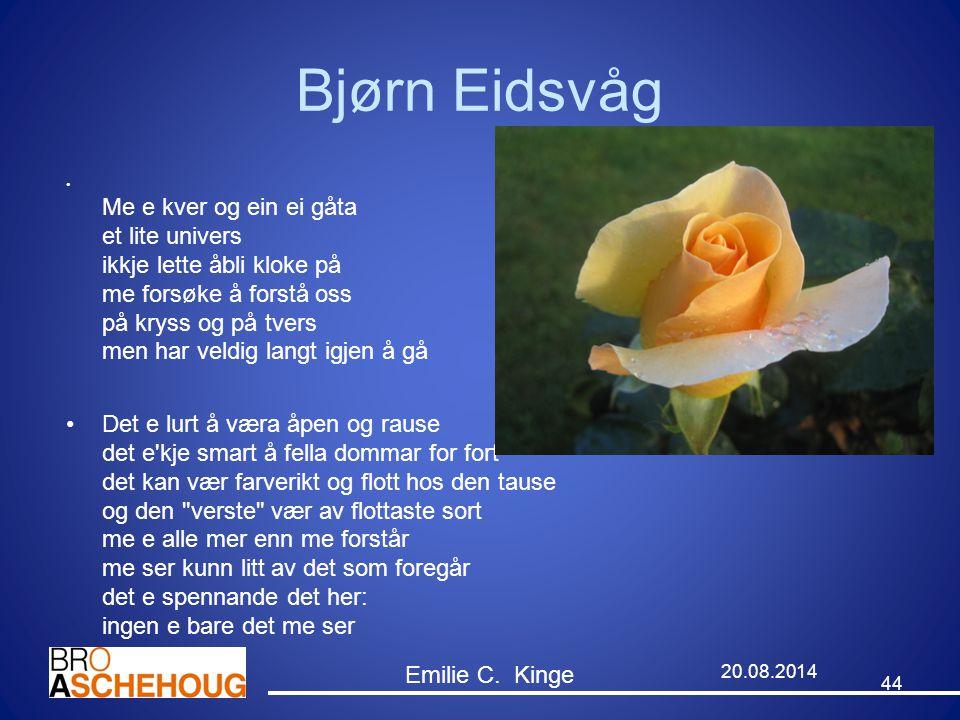 Bjørn Eidsvåg